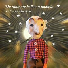 My Memory Is Like a Dolphin - Single