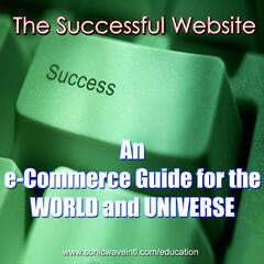 The Successful Website : An e-Commerce Guide for the New World and Univerise