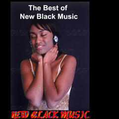 The Best Of New Black Music Vol 2