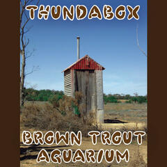 Brown Trout Aquarium