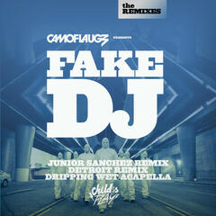 Fake DJ (The Remixes)