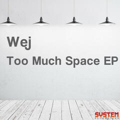 Too Much Space EP