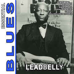 Black Snake Moan - Essential Blues By Leadbelly