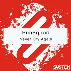 Never Cry Again - Single