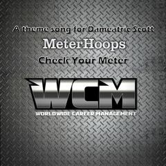 Check Your Meter - A Theme Song for Dameatric Scott - Single