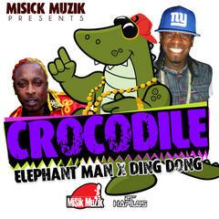 Crocodile - Single