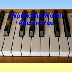 Wonderful World - Single