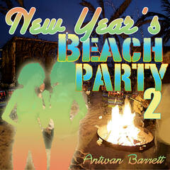New Year's Beach Party 2