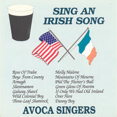 Sing An Irish Song