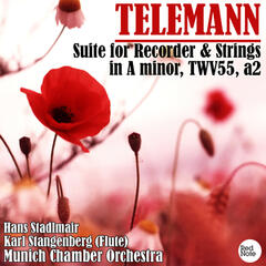 Telemann: Suite for Recorder & Strings in A minor, TWV55, a2