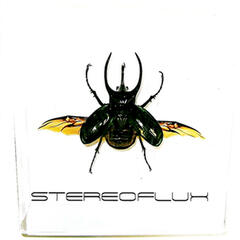 Stereoflux