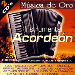 Instrumental Acordeón (28 Hits in Accordion)