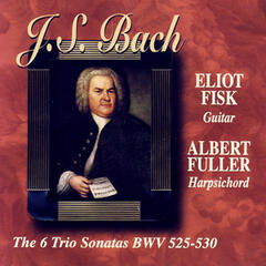 J.S. Bach: The Six Trio Sonatas BWV 525-530