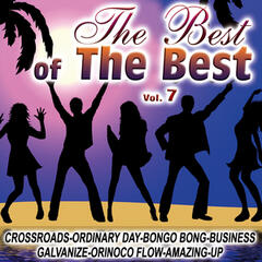 The Best Of The Best Vol.7
