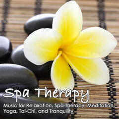 Spa Therapy: Relaxation, Spa Therapy, Meditation, Yoga, Tai-Chi, Tranquility