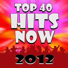 Top 40 Hits Now 2012