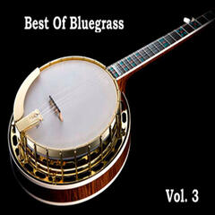 Best Of Bluegrass Vol. 3