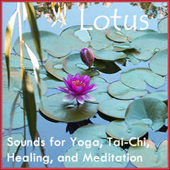 Lotus: Sound for Yoga, Tai-Chi, Meditation, and Healing