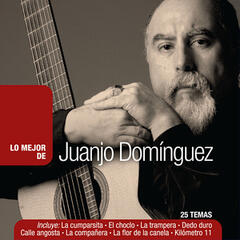 Lo Mejor de Juanjo Domínguez