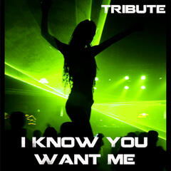 I Know You Want Me (Tribute to Pitbull)