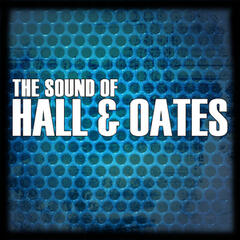 The Sound Of Hall & Oates