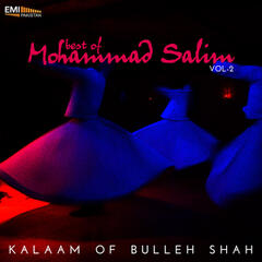 Best of Mohammad Salim, Vol. 2