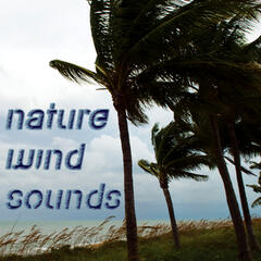 Nature Wind Sounds