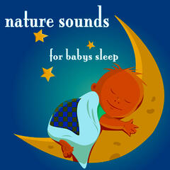 Nature Sounds For Baby's Sleep