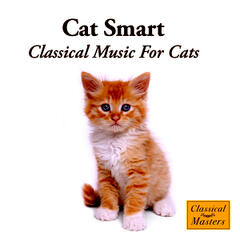 Cat Smart - Classical Music For Cats