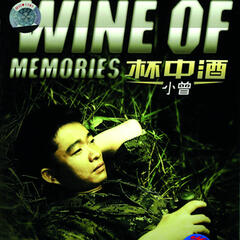 Bei Zhong Jiu (Wine Of Memories)