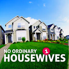 No Ordinary Housewives Vol. 1