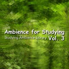 Ambience for Studying Vol. 3