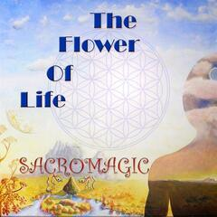 The Flower Of Life 1 special edition