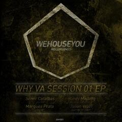 WHY VA Session 01 EP
