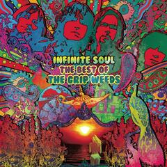 Infinite Soul - The Best of the Grip Weeds