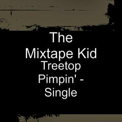 Treetop Pimpin' - Single