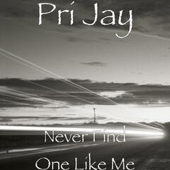 Never Find One Like Me - Single