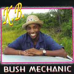 Bush Mechanic