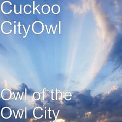 Owl of the Owl City