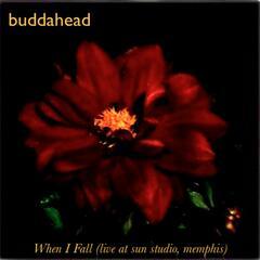 When I Fall (live At Sun Studio, Memphis) - Single