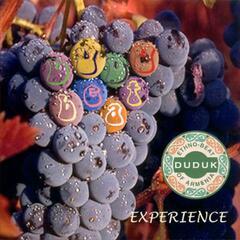 Armenian Duduk - Experience