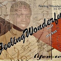 Feeling Wonderful