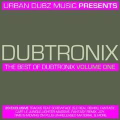 The Best of Dubtronix Volume One