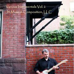 Various Instrumentals Vol. 2