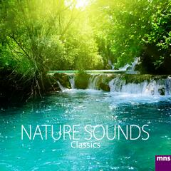 Nature Sounds Classics