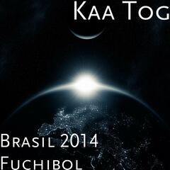 Brasil 2014 Fuchibol