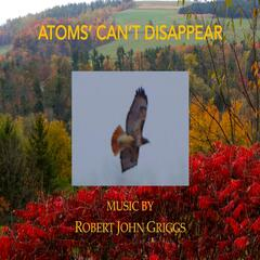 Atoms' can't Disappear
