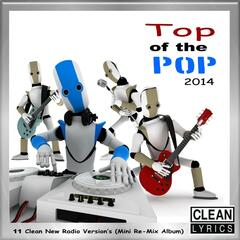 Top of the Pop 2014 (11 Clean New Radio Version's) [Mini Re-Mix Album]