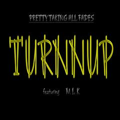 Turnnup (Clean) [feat. Mlk]