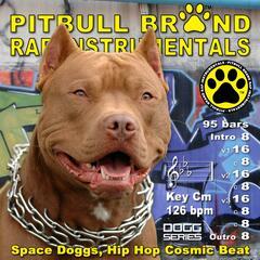 Space Doggs, Hip Hop Cosmic Beat (126 BPM) Cm [Instrumental]